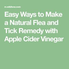 Easy Ways to Make a Natural Flea and Tick Remedy with Apple Cider Vinegar