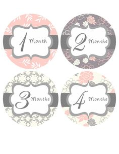 Monthly Onesie Stickers Baby Girl Month Stickers by getthepartystarted, $12.00