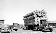Idaho logging