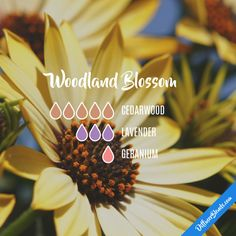 Woodland Blossom - Essential Oil Diffuser Blend