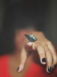 Image discovered by Find images and videos about flower and butterfly on We Heart It - the app to get lost in what you love. Butterfly Effect, Butterfly Kisses, Blue Butterfly, Madame Butterfly, Butterfly Images, Butterfly Wings, Photographie Portrait Inspiration, Foto Art, Life Is Strange
