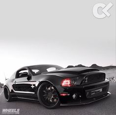 Ford Mustang Shelby GT500                                                                                                                                                                                 More