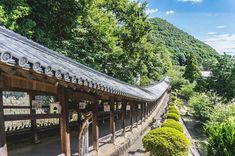 桃太郎のモデルとなった吉備津彦命を祀る神社。敷地は大きく、見所も多いのですが、なんといっても自然の傾斜をそのままに約400mも続く美しい回廊は圧巻でした。背筋がピンと伸びるような景観を楽しめます。 Beautiful Places In Japan, Beautiful World, Okayama, Japanese Landscape, Japan Photo, Great View, Landscape Photos, Japan Travel, Travel Photos