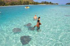 moorea tahiti   Moorea (Tahiti)