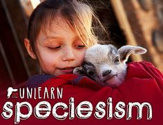 Species are dying out every day because of speciesism. Just because you don't hunt endangered species doesn't make you innocent. Animal agriculture - the farming of animals for meat and dairy - is destroying wildlife habitat and our climate.  Speciesism is an insidious condition leading to mass extinction,  and possibly our own. Unlearn speciesism. It's more than caring about the welfare of cattle.