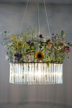 Make a statement with this chicly scientific chandelier. Handcrafted out of laboratory test tubes set in plywood bands, it is inspired by famous Polish-born French physicist and chemist Marie Curie.