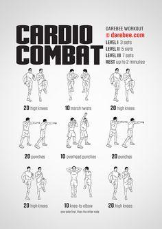 Cardio Combat Workout