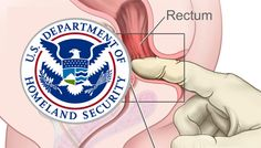 """TSA's new """"pat-downs"""" are so invasive, airports are pre-emptively warning cops to expect sexual assault claims http://boingboing.net/2017/03/06/a-date-with-doctor-jellyfinger.html?utm_campaign=crowdfire&utm_content=crowdfire&utm_medium=social&utm_source=pinterest"""