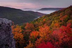 Image result for West Virginia Landscape