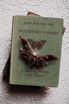 Makaylin's butterfly boom. Assembled herself