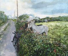 Gallery: Scenes - Paint for Me Connemara, House Painting, Moose Art, Scene, Horses, Oil, Landscape, Portrait, Gallery