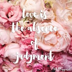 Happy Tuesday! #livetolove #thedailytype #peonies #quote #inspiration #lovequote #love #positive #dailypositive #typography #design #font #handlettering #floral #flowers #tylertx #tumblr