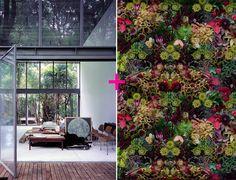 open house + lisa a. frank photography.