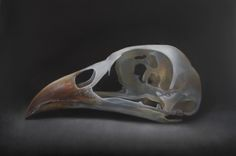 Spoon Rest, Skull, David, Tableware, Animals, Art, Art Background, Dinnerware, Animales