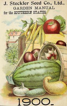 Vintage Seed Catalog Back Cover Illustration by VintageLitho