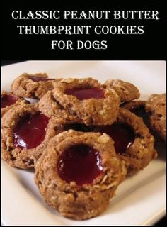 These tasty treats are not only simple to make – They look like high end gourmet dog cookies!