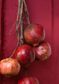 pomegranates - romãs