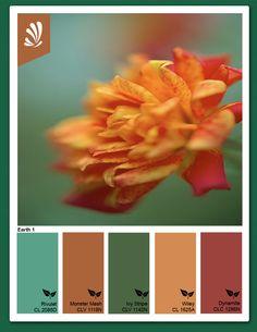 Google Image Result for http://www.stylyze.com/wp-content/uploads/2012/05/OrangeTealFlowersm1.jpg