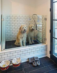 cantinho banho cães 5 - houzz - Peter A. Sellar