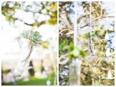 Protea-themed Wedding at The Bridge in Muldersdrift by Melanie Wessels Rustic Wedding, Our Wedding, Wedding Ideas, Vintage Country, Vintage Style, Daytime Wedding, Wedding Bottles, Hanging Succulents, In The Tree