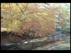 """Quick Poetry: """"Old October"""" by James Whitcomb Riley"""