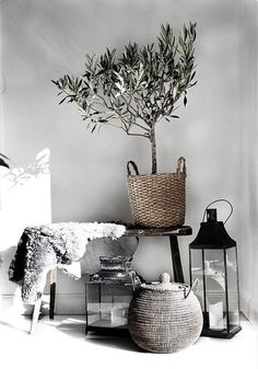 Everything I love in one pucture. #homedecor