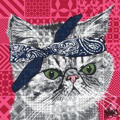 Tupac Exotic Shorthair Cat Card