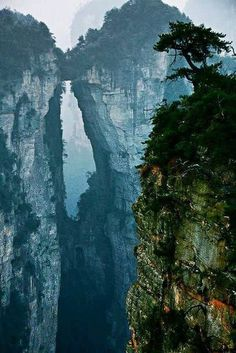 Zhangjiajie Stone Forest - China's Avatar Mountains.