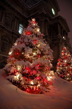 Red And White Christmas Lights Christmas Scenes White Christmas Lights Christmas Lights