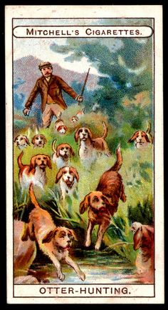 """https://flic.kr/p/dobhU4 