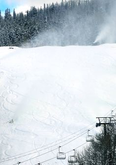 Fresh powder. #steinstyle #skithedifference