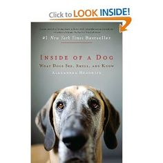 A little too heavy on behavioral science for me, BUT a very interesting look at why dogs do what they do. (Just in case you were wondering!)