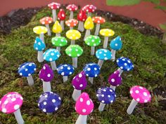 FREE Shipping super shiny 24 miniature mushrooms alice in wonderland mad hatter tea party favors terrarium miniatures gnome garden woodland on Etsy, $23.98