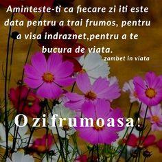 Spiritual Quotes, Spirituality, Plants, Spirit Quotes, Spirituality Quotes, Spiritual, Plant, Planets, Religious Quotes