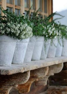 Use pots rather than window box