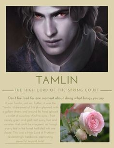 A court of thorns and roses -- before Tamlin became a complete TOOL. He wasn't bad, and he really did care for Feyre, but he broke under the mountain and their broken parts didn't fit together anymore