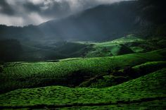' Munnar ' A good place to spend a couple of days with beautiful and scenic views .