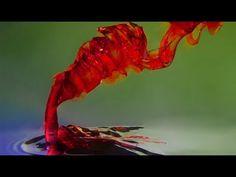 Color Drop & Pour Photography Technique - by LearnMyShot