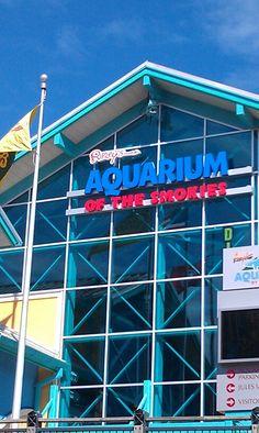 Ripleys aquarium in Smokey Mountains, Tennessee
