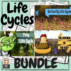Teach your students about life cycles!
