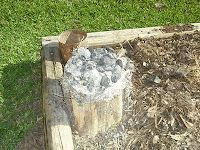 How to remove a stump in 2-3 days instead of 2-3 years. Charcoal