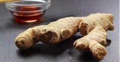La raíz de jengibre es una de las plantas más empleadas en la cocina, especialmente