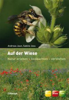 Jaun, Andreas / Joss, Sabine «Auf der Wiese. Natur erleben - beobachten - verstehen» | 978-3-258-07589-1 | www.haupt.ch