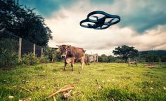 Today's agriculture has transformed into a high-tech enterprise that most 20th-century farmers might barely recognize.
