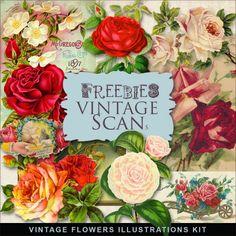 Freebies Vintage Flowers Illustrations
