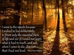 """I went to the woods because I wished to live deliberately, to front only the essential facts of life, and see if I could not learn what it had to teach, and not, when I came to die, discover that I had not lived."" - Henry David Thoreau"