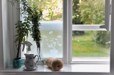 """photo: Babette Fischer """" My kitchen window"""" Today I have seen your new idea for the community board on Pinterest and I love the new theme. On my blog """"Not Quite Snow White"""" I have been very inspired by this topic too.   notquitesnowwhite.com"""