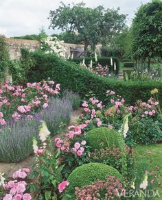Steps for Growing a Romantic Rose Garden Ever dreamed of starting your own rose garden? Here's how.Ever dreamed of starting your own rose garden? Here's how. Boxwood Landscaping, The Secret Garden, Bloom And Wild, Rose Garden Design, Garden Cottage, Manor Garden, Romantic Roses, Plantation, English Roses
