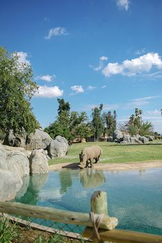 African Adventure, Fresno Chaffee Zoo, Fresno, California, USA by The Portico Group
