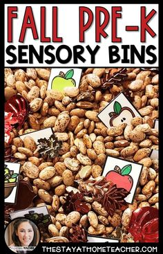 Combine fine motor skills practice and common preschool skills with these Fall themed Preschool Sensory Bins! Students will practice counting, sorting, colors, shapes, letters, and so much more! #fall #preschool #sensorybins